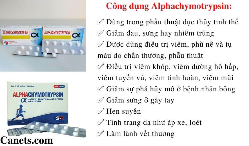 Alpha chymotrypsin - Canets.com (1)