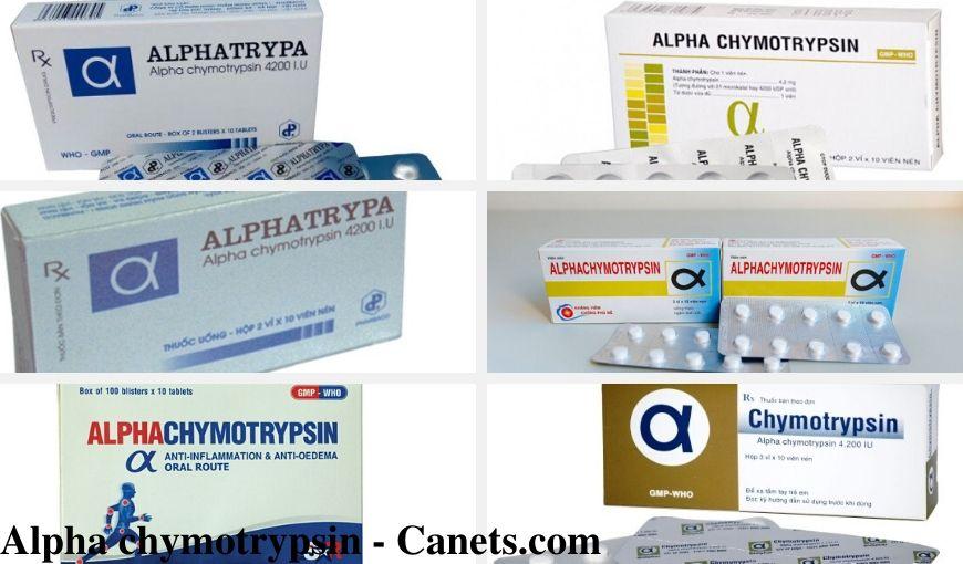 Alpha chymotrypsin - Canets.com
