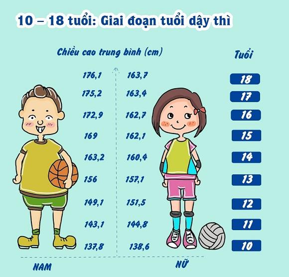 Cách tăng chiều cao ở tuổi dậy thì ( 10 – 18 tuổi )