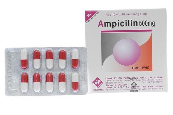 Thuốc kháng sinh Amoxicillin được sử dụng trong điều trị nhiễm trùng (5)