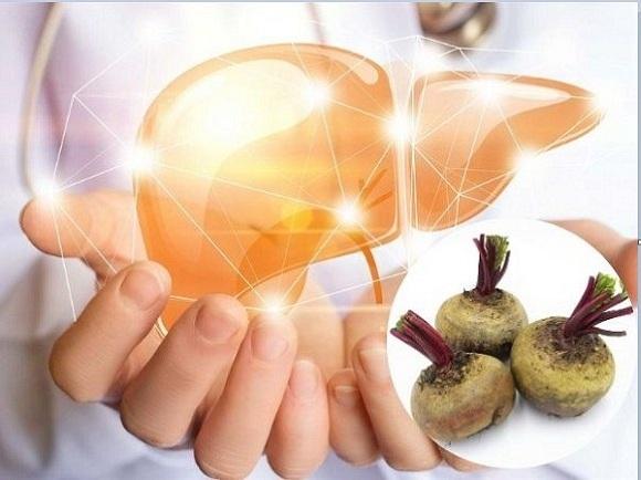 Củ dền đỏ giúp giải độc gan hiệu quả (4)