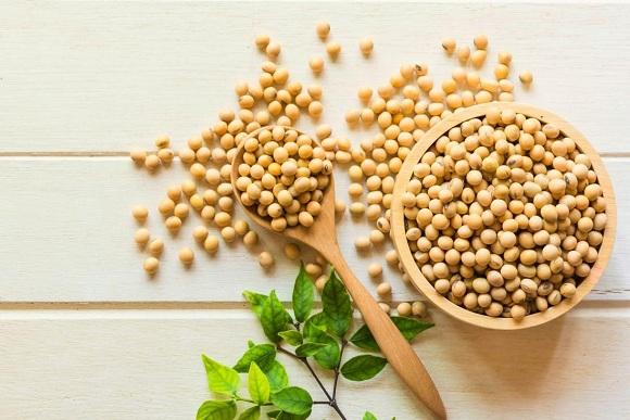 Mầm đậu nành là chiết xuất của đậu nành (2)