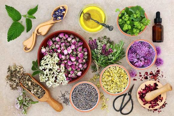 Những lợi ích cho sức khỏe của tinh dầu thiên nhiên (4)