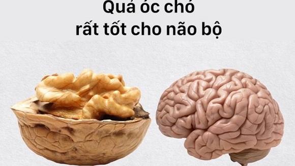 Quả óc chó rất tốt cho não bộ (3)